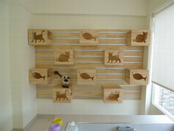 The Modular Cat Climbing Wall Take Your Feline Friends To New Heights