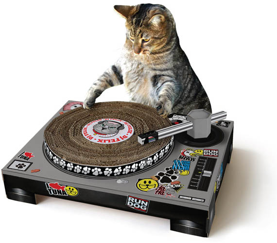Teach Your Cats to Scratch Records, Not Recliners
