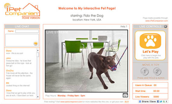 iPet Entertains Your Pooch When You Can't