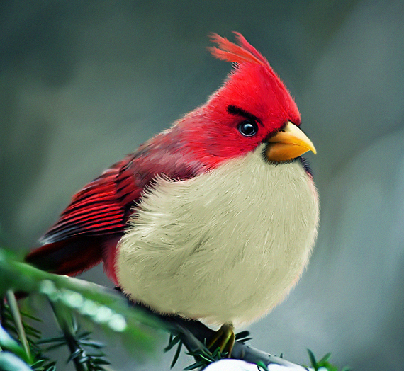 Angry Birds in the Real