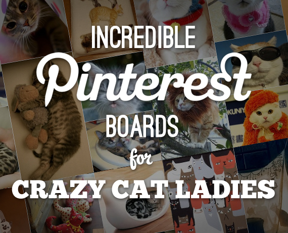 Pinterest Boards for Crazy Cat Ladies