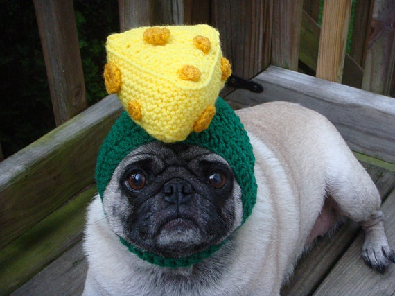 Knitting Pattern For Pug Hat : Ridiculous Knit Hats For Your Dog Incredible Things