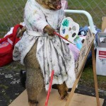 best-dressed-possum-competition-3
