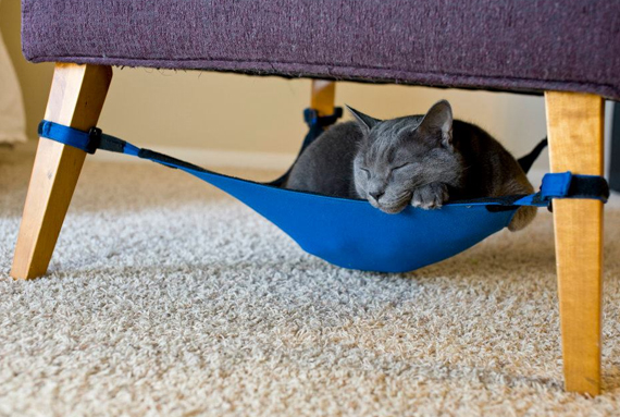 Embrace The Lazy, Get Your a Cat Hammock
