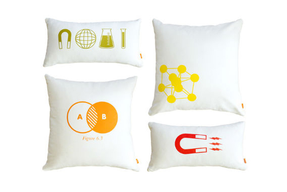 I've Got My Ion Some Chemistry Pillows