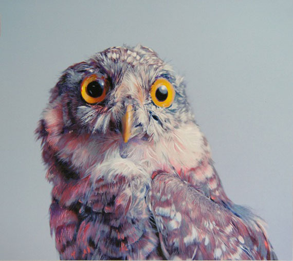 Illustrated Owls: Drawings, NOT Photos