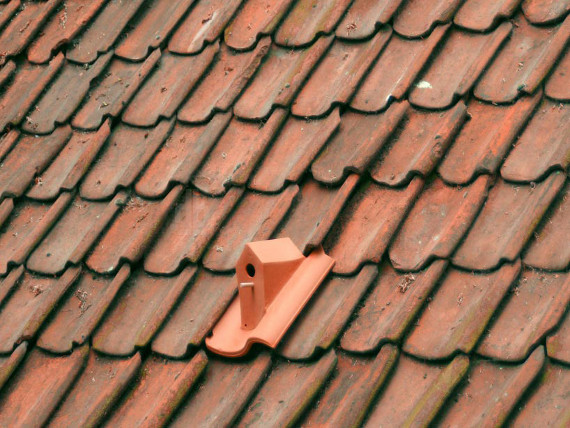 The Birdhouse Rooftile Is For The Birds
