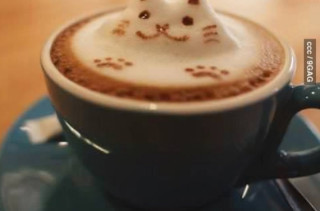 Purrfect 3D Latte Art
