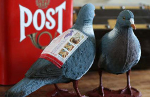 Send A Bird In The Mail With Pigeon Post