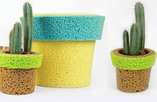 Sponge Pots Soaked Plants