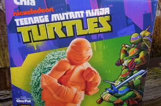 Teenage Mutant Ninja Turtle Chia Pet