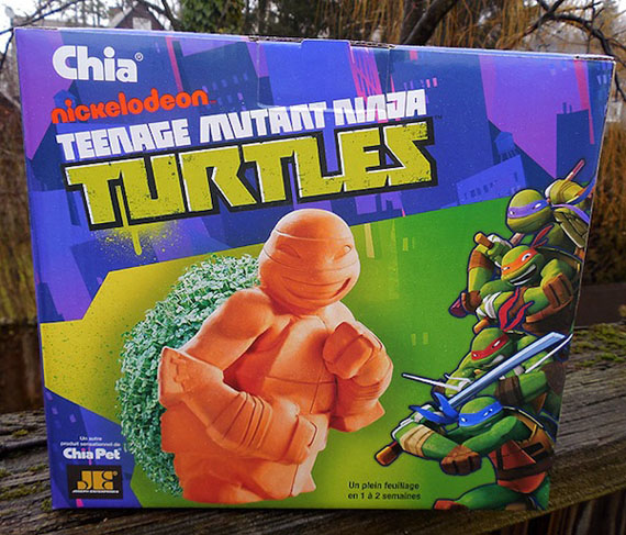 Teenage Mutant Ninja Turtle Chia Pet