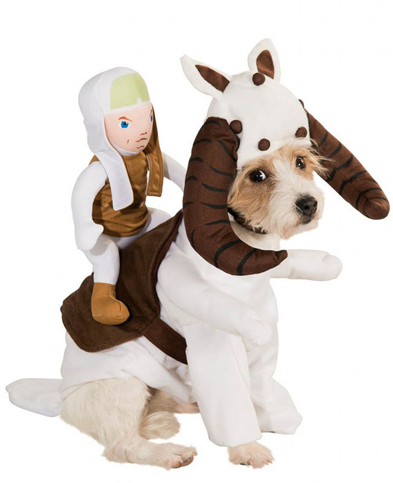star-wars-dog-costumes-3