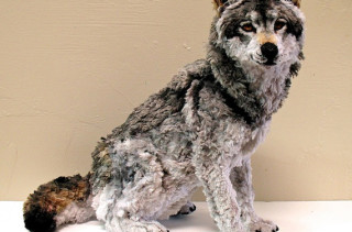Realistic Animal Sculpture Made of Pipe Cleaners