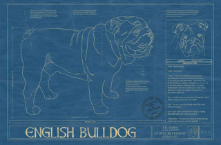 For Pet Architects: Animal Blueprints