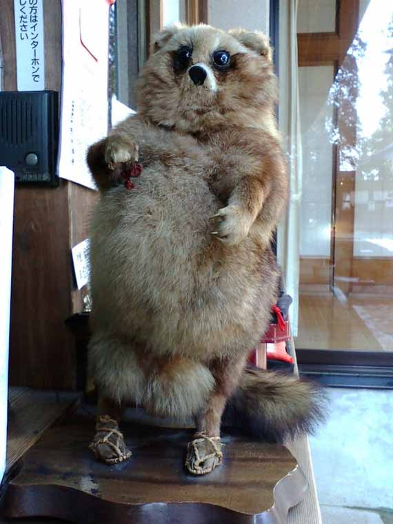 creepy-taxidermy-10