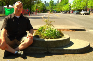 The Smallest Park In The Whole World