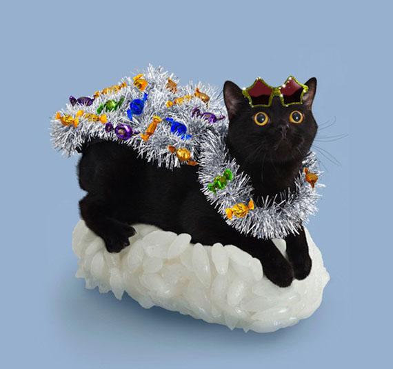 sushi-cats-6