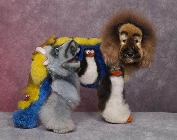 dogs-hair-dye-characters-7