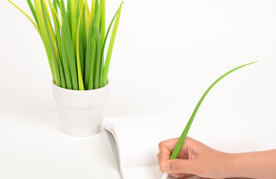 Replace Your Pen Cup with a Pot of Grass
