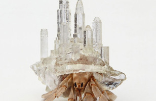 Hermit Crab Sculptures