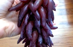 Weird Grapes Are Weird!