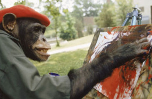 Brent, The Painting Chimp