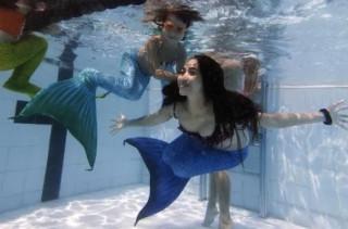 A School For Mermaids