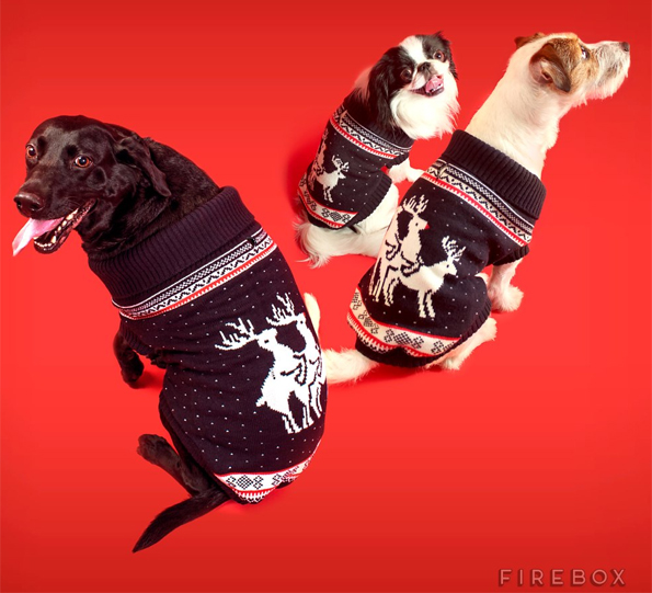 Christmas-Jumper-for-Dogs-2