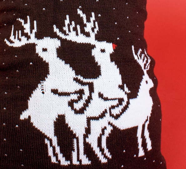 Christmas-Jumper-for-Dogs-3
