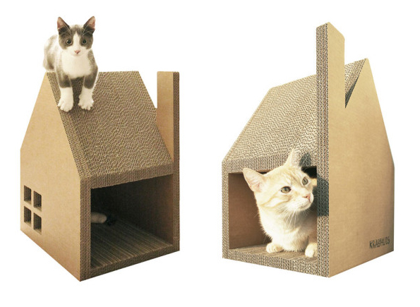 Scratch-House-cats-2