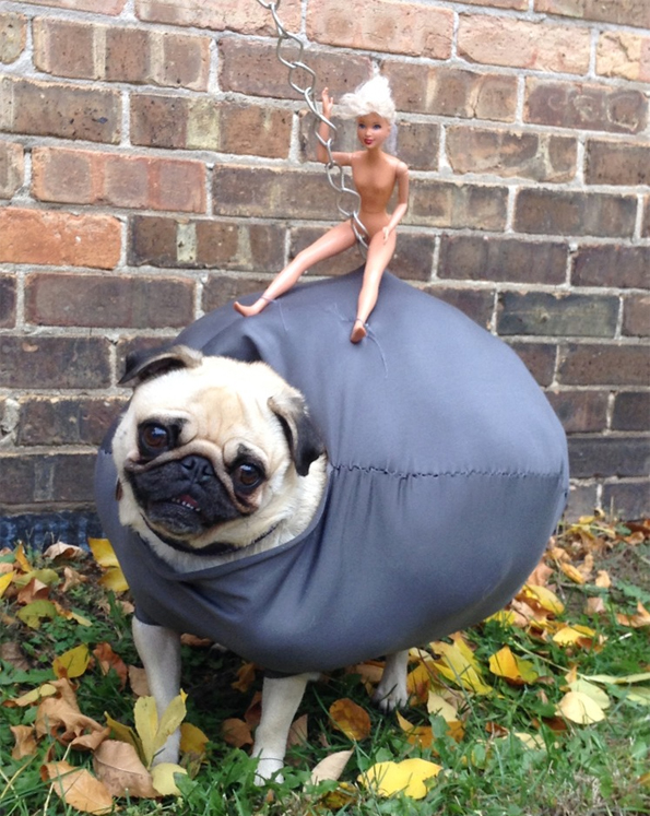 Pug Wrecking Ball Halloween Costume