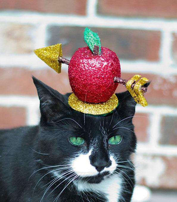 cat-hats-notsokitty-2