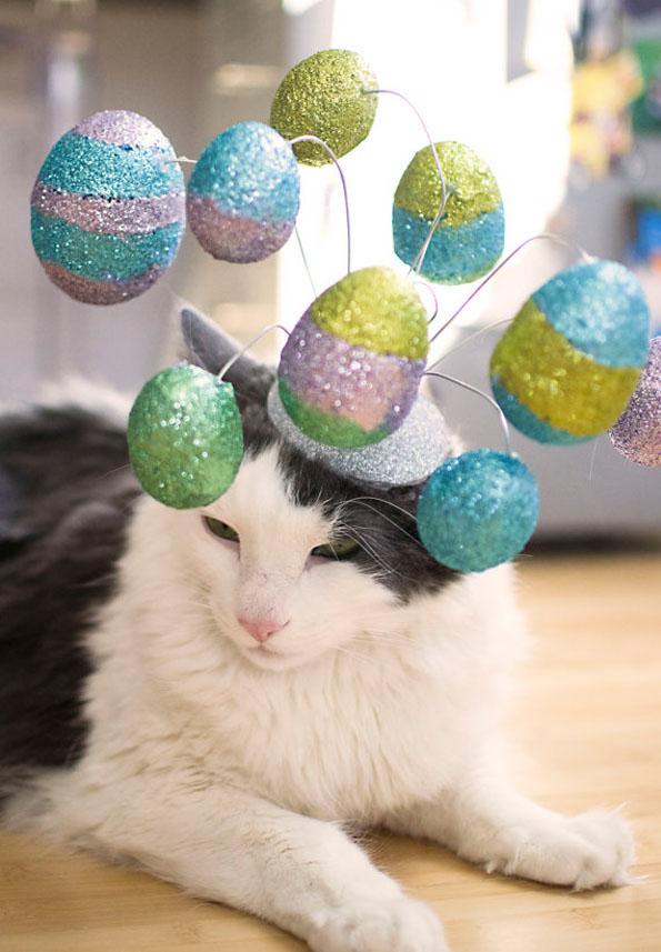 cat-hats-notsokitty-5