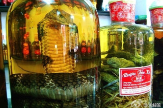 Snake Marinating in Wine for 3 Months Bites Woman