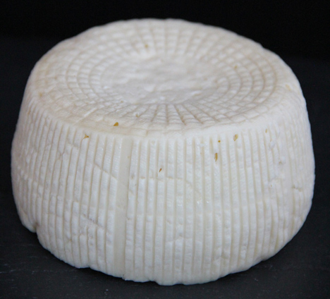 Cheese-made-from-humans-3