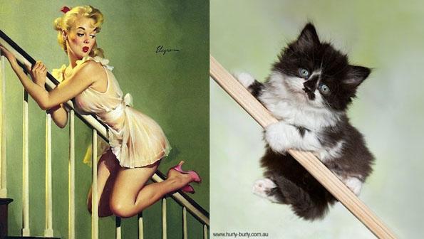 cats-pin-ups-8