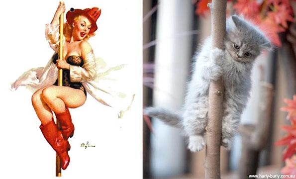 cats-pin-ups-9