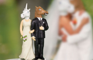 Unicorn/Horse Wedding Cake Topper