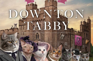 Downton Tabby: Because Everything is Better with Cats