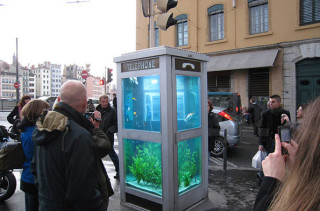 Phone Booth Fish Tanks