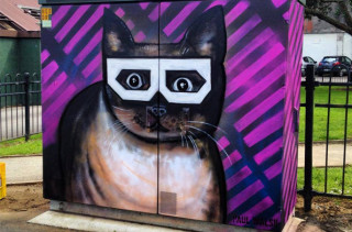 New Zealand's Utility Boxes Get Dolled Up