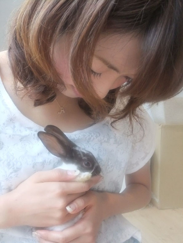 Rabbit Cafe Offers Bunny Snuggles