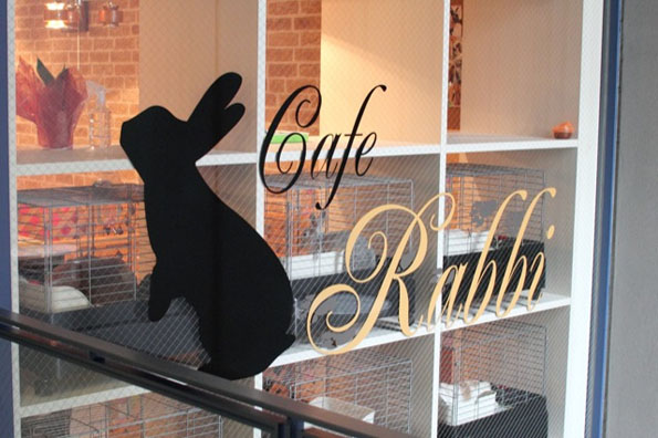 bunny-rabbit-cafe-japan-3