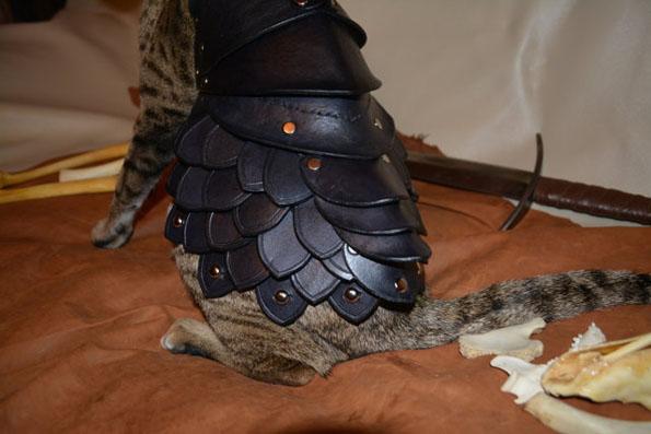 cat-battle-armor-4