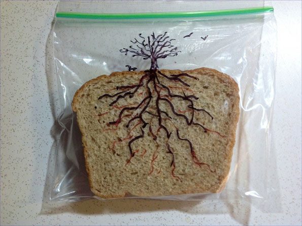 dlaferriere-dad-sandwich-bag-art-7