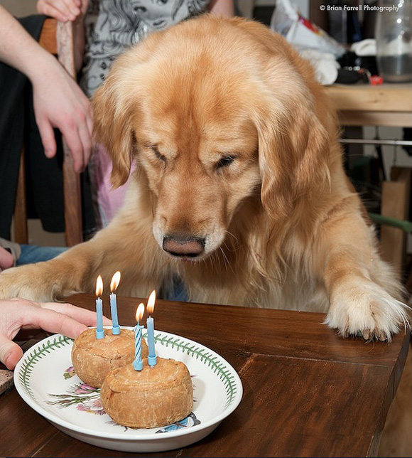 golden-birthdays-1