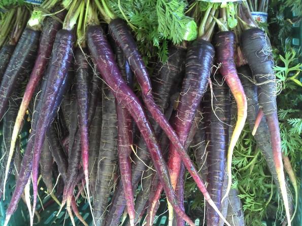 purple-carrots-3