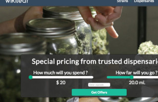 Track Down The Best Bud Prices