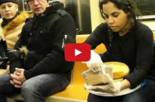 Woman Ices Cake & Serves Cake On Subway